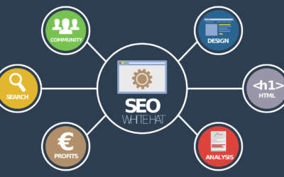 What is SEO, and Why is It Important?